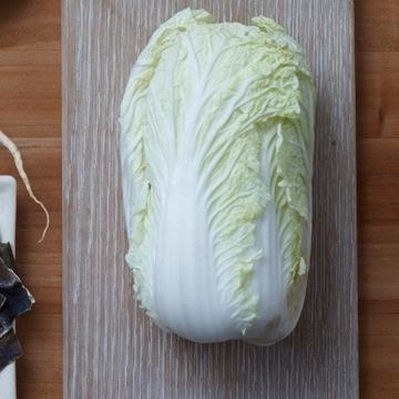 Chinese or Napa Cabbage